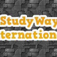 STUDY ENGINEERING IN INDIA IN SCHOLARSHIP