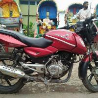 Red palsur 2014 For Sale
