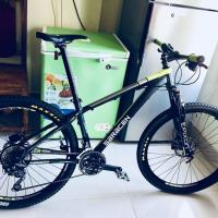 Saracen Mantra Pro (Highly Upgraded)
