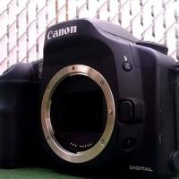 Canon 10D Only Body.