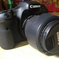 canon 7d with 18-55 stm