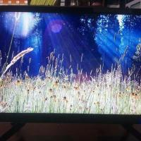 "19"" LED TV (World Cup Offer)"