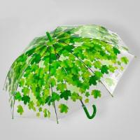 Fashionable Umbrella (SW1100)