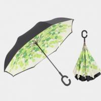 Fashionable Umbrella (A0002LS)